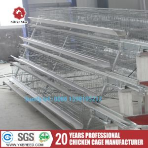 Poultry Farm Design Layout Chicken Equipment Poultry Cages A4l120 pictures & photos