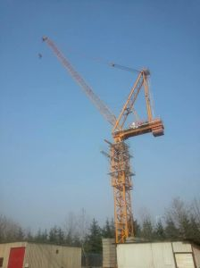 Jib Customzied Tower Crane for Sell