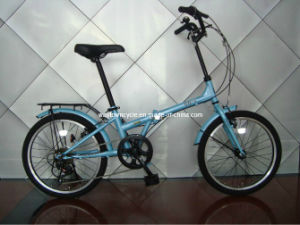 Folding Bike (WT-FOLD-2038) pictures & photos