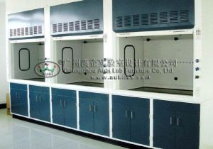 Laboratory Steel Fume Hood/Fume Cupboard/Lab Equipment