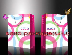 Shopping Paper Bags/ Gift Paper Bags (G-3)