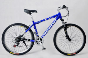 Fashion 21sp Alloy Mountain Bicycle (FP-MTB-A027) pictures & photos