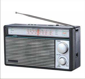 FM/AM/SW 3 Band Radio Receiver MP3 Player (BW-1201U)