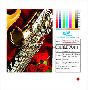 Self Adhesive High Glossy PP Paper (waterproof)