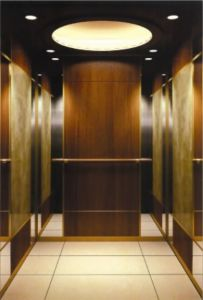 High Quality Passenger Elevator with Small Machine Room pictures & photos