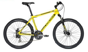 "21speed 26"" Mountain Bicycle Bike (FP-MTB-ST018) pictures & photos"
