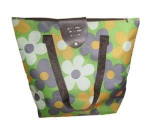 Non Woven Bag (XT-B016) pictures & photos