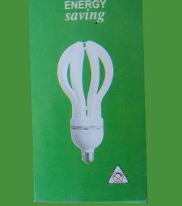Lotus 45w Energy Saving