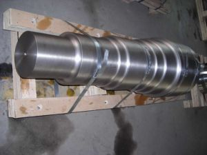 Transmission Shaft (LYR006) pictures & photos