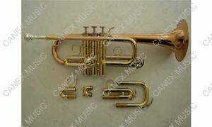 Eb/D Trumpet (TR-100HL) / Brass Instruments Trumpet pictures & photos