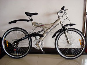 Hot Sale Strong Bold MTB Bike (MTB-026) pictures & photos