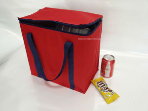 Square Cooler Bag Camping Bag pictures & photos