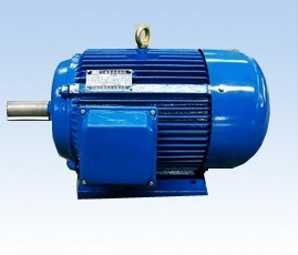 Induction Motor-Y, Y2 Series (W, F, TH)