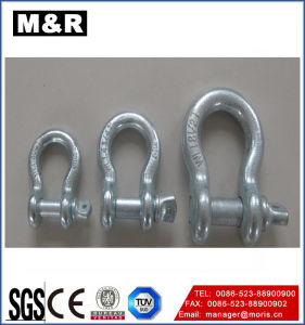 Heavy Duty Forged Screw Pin Anchor Shackle pictures & photos
