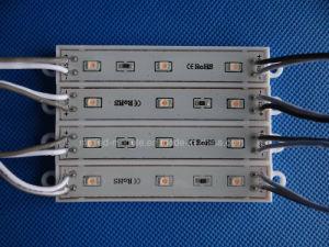 Epoxy 5054 LED Module pictures & photos