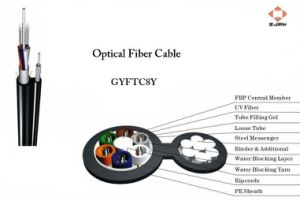Optical Fiber Cable (GYFTC8Y)