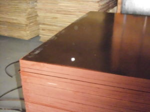 Inspection Service/Pre-Shipment Inspection/Cargo Inspection/Shipping Goods Quality Control pictures & photos
