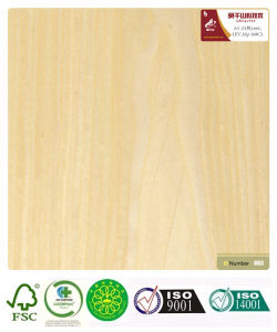 Maple Wood Veneer (168C) with Fsc Certification