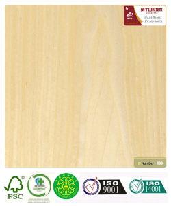 Maple Wood Veneer (168C) with Fsc Certification