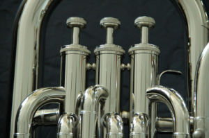 Euphonium (EU-200) pictures & photos