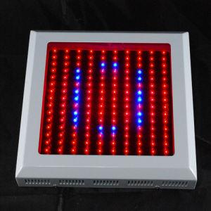 High Power LED Grow Light 150x1W (GL120W)