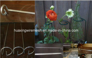 Stainless Steel Garden Flower Supports pictures & photos