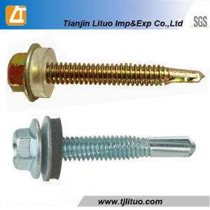 10years Experience Supply Hex Head Self Drilling Screws pictures & photos