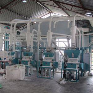 Africa Market of 20t/24h Fine Maize Flour Milling Machine pictures & photos