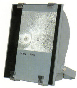 Flood Light (QYTG208A) pictures & photos