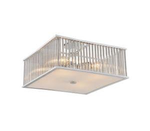 Simple Square Ceiling Lamp C1856 pictures & photos
