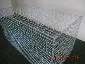 Environmentally Friendly Welded Metal Wire Mesh Gabion Box for Hot Sale (XMS13) pictures & photos
