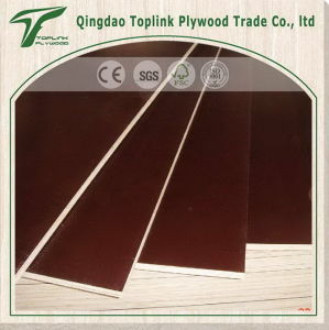 Concrete Wood Plywood Formwork Material pictures & photos