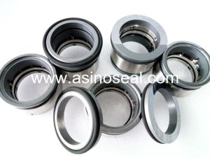 Multiple Spring Mechanical Seal Type 491 pictures & photos