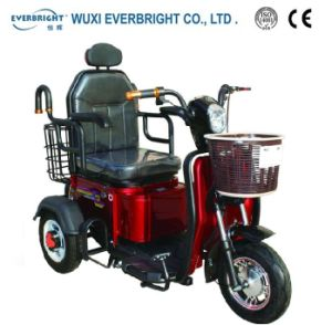 500W 48V Electric Tricycle for Adult with Ce En12184