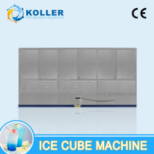 Stable Performance 5 Tons Ice Cube Machine with Low Price pictures & photos