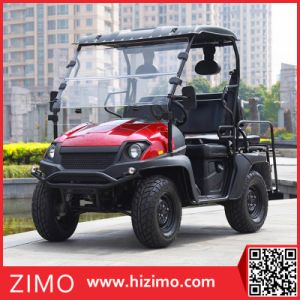 2017 New 4kw Electric Go Cart Buggy pictures & photos