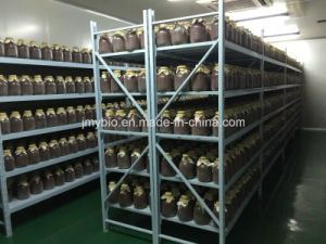 Manufacturing 0.2% - 5% Monacolin K Red Yeast Rice pictures & photos
