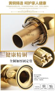 Single Handle Luxury Gold Brass Magic Lamp Zf-F30 Bidet Mixer Faucet pictures & photos