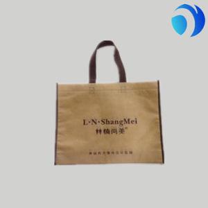 Fashion Biodegradable Customized Non Woven Bag pictures & photos