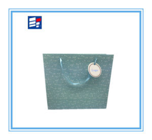 Professional Paper Shopping Bag with Custom Logo pictures & photos