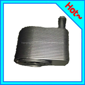 Engine Oil Cooler for Range Rover Sport 160004-01 pictures & photos