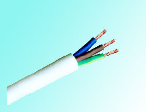 Copper Conductor PVC Insulated and Sheath Flat Wire BVVB Two Core 6mm2 pictures & photos