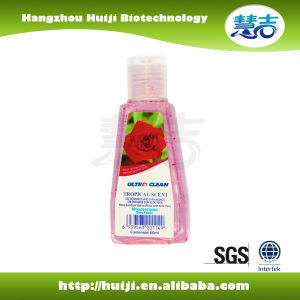 GMPC Approved Antibacterial Hand Sanitizer pictures & photos
