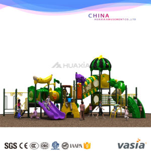 Buy Wenzhou Vasia Children Outdoor Playground pictures & photos