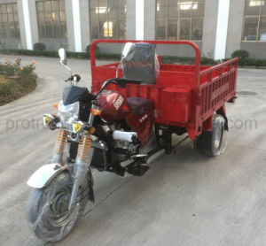 250cc Three Wheel Cargo Tricycle with Water Cooling pictures & photos