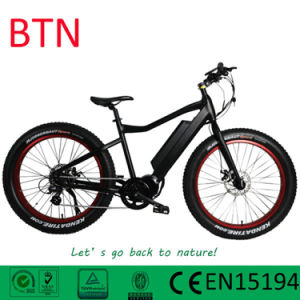 Btn New Pupular Snow Cruiser Bafang 36V 250W Ebike pictures & photos