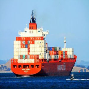 Professional Sea Forwarder Specailizing in Laredo, Tx, USA pictures & photos