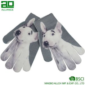 Nice Winter Print Magic Gloves pictures & photos