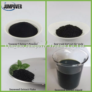 Organic Seaweed Extract Fertilizer for Farm Plant pictures & photos