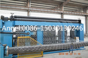 Hexagonal Wire Mesh/ Gabion Mesh Machine pictures & photos